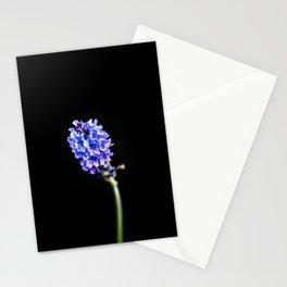 Lavandula pinnata Stationery Cards