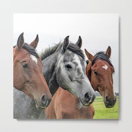 Wonderful Horses Metal Print