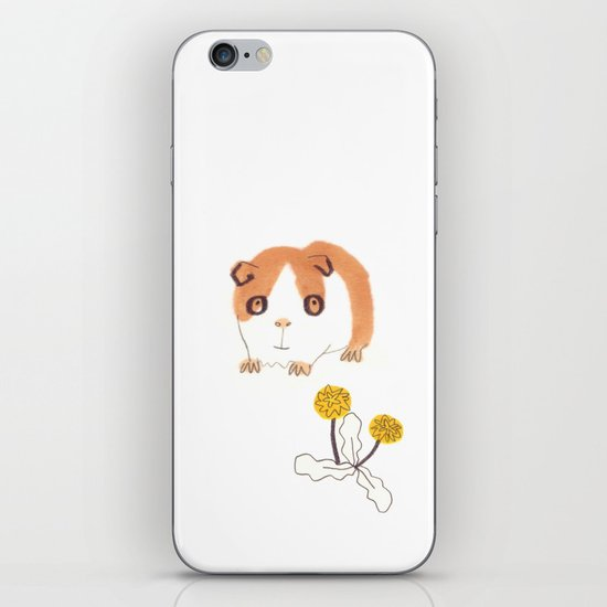 Guinea Pigs iPhone & iPod Skin