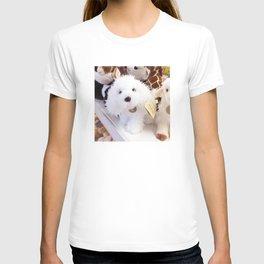 puppy doll T-shirt