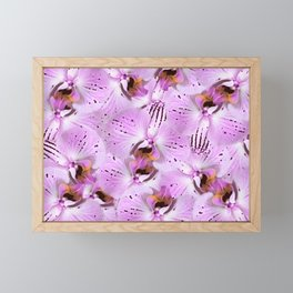 Plum Orchids Framed Mini Art Print