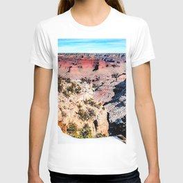 desert at Grand Canyon national park, USA in winter T-shirt