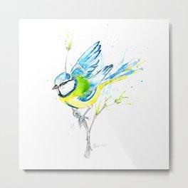 British Birds Series - Blue Tit Metal Print
