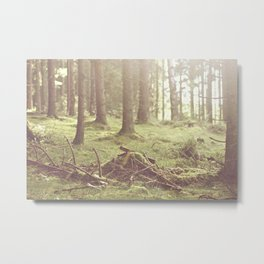 The magical forrest Metal Print