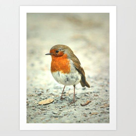Robin the Great Art Print