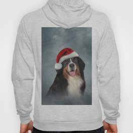 Bernese Mountain Dog in red hat of Santa Claus Hoody