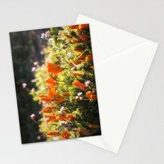 California poppy | Noriko Aizawa Buckles Stationery Cards