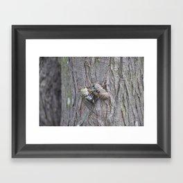 new wings Framed Art Print