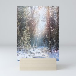 Sunny winter day Mini Art Print