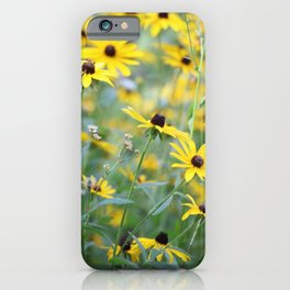 Daisies and More iPhone Case