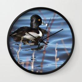 Ringneck Duck Wall Clock