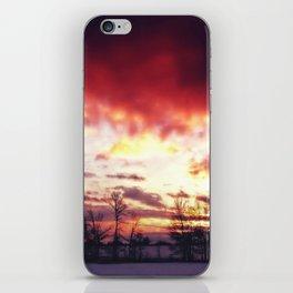 Arctic Warmpth iPhone Skin