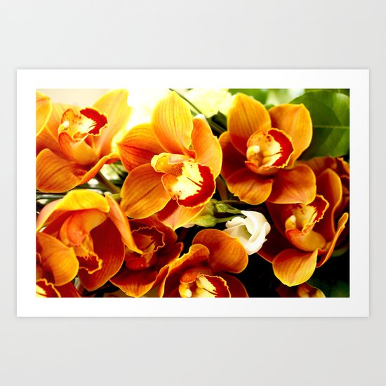 Orchid Corsage Art Print