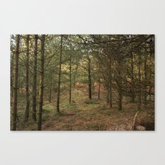 Woods of Memory Canvas Print
