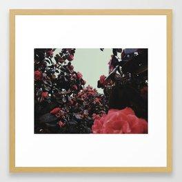 Wonderland's Ladder Framed Art Print