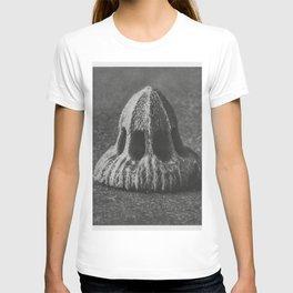 Callistemma Brachiatum (Seed of a Scabious) enlarged 30 times from Urformen der Kunst (1928) by Karl T-shirt