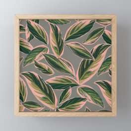 Calathea Leaves Pattern- Pink Green Gray Framed Mini Art Print