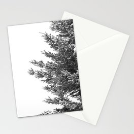 B&W Spruce Branches Stationery Cards