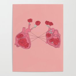 lovers anatomy Poster