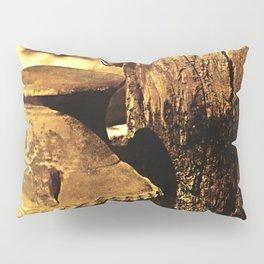 Ancient Jar Pillow Sham