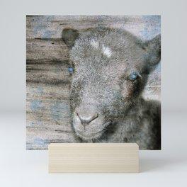 Lambkin - Cute black lamb Mini Art Print