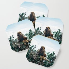 Macaque Mother and Daughter Coaster
