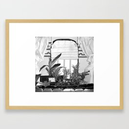 20/ View From A Shoe Box by Mandy Potter Framed Art Print