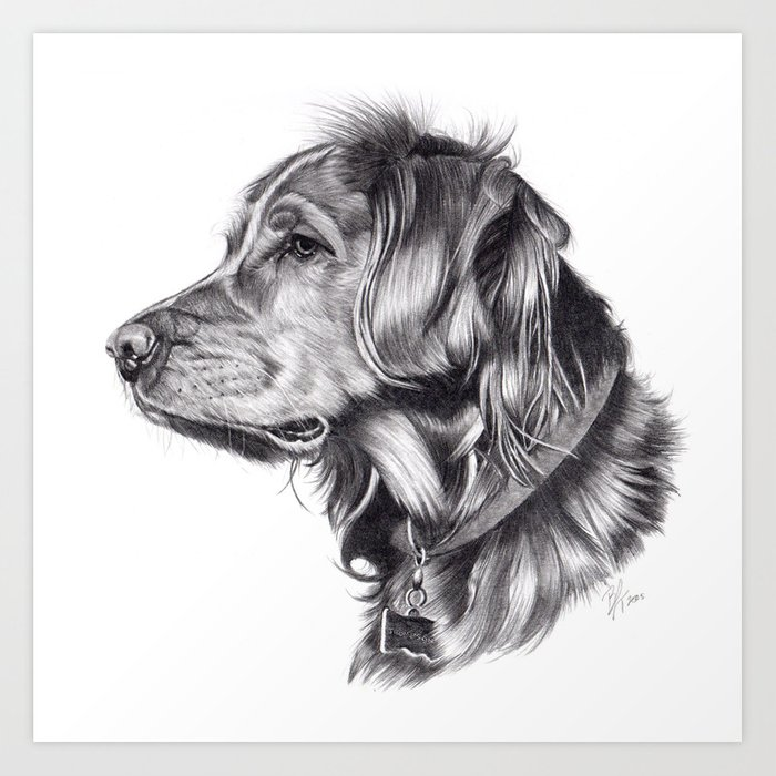 Retriever Art Print