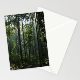 Green forest shrouded the sun. Stationery Cards