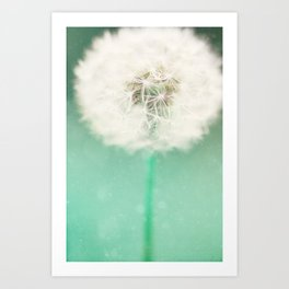 Dandelion Seed Art Print