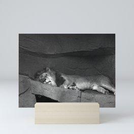 The Big Cat Nap Mini Art Print