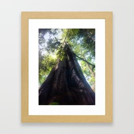 Big fig Framed Art Print