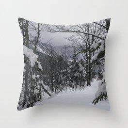Winter in the Whites Throw Pillow