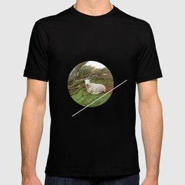 Lamb in the Grass  T-shirt