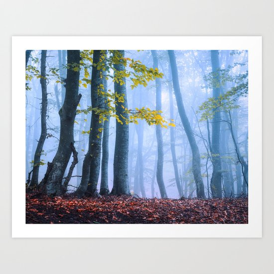 Mysterious Woods Art Print