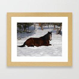 #406 winter horse Framed Art Print