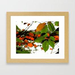 Famous fall 1 Framed Art Print