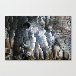 Charred Canvas Print