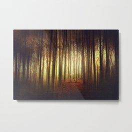 passage into the light Metal Print