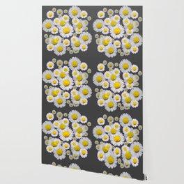 CHARCOAL GREY GARDEN OF SHASTA DAISY FLOWERS Wallpaper