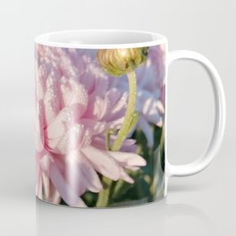 A delicate pink flower and emerald dew on the petals of the chrysanthemum Coffee Mug