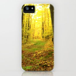 Autumnal Pathway iPhone Case