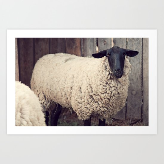 have you any wool? Art Print