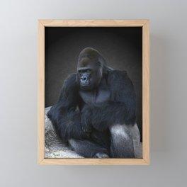 Portrait Of A Male Gorilla Framed Mini Art Print