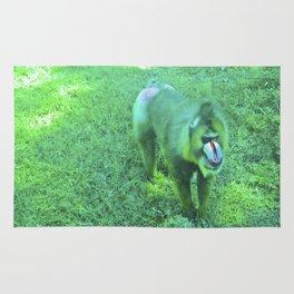 Monkey red nose, between green. Rug