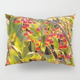 Bright red berries on a tree Pillow Sham