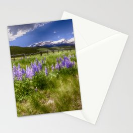 Mountain Lupines Stationery Cards