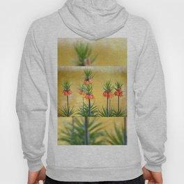 Orange lily flowers Fritillaria imperialis Hoody
