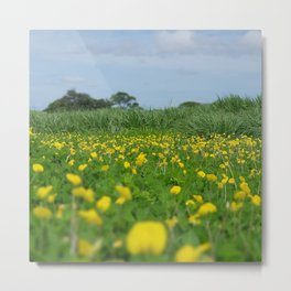 Flowers nature costa rica wild Metal Print