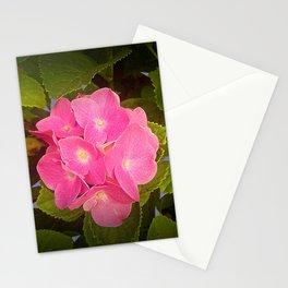 Orquiea Stationery Cards